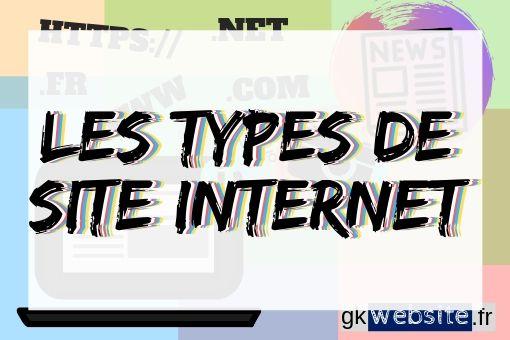 Infographie les différents type de site internet